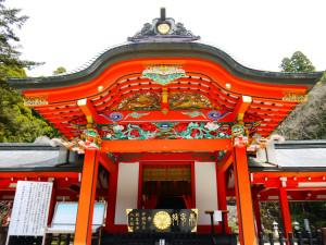 綺麗な祭殿と、南九州発祥の杉の木は必見!!? 霧島神宮