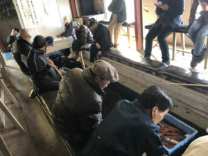 元気な金魚で有名な長洲町〜金魚の競りに潜入〜